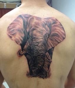 Tatuaje de elefante en espalda