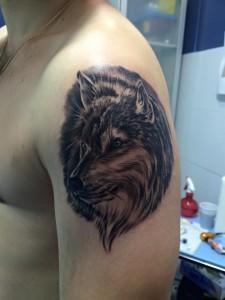 Tatuaje de cabeza de lobo en hombro