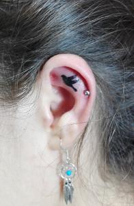 Tatuaje de pájaro en oreja realizado en nuestro centro de Montera de Madrid