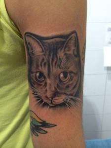 Tatuaje de cabeza de gato