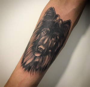 Tatuaje de retrato de cabeza de perro collie